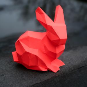 Bunny paperkit