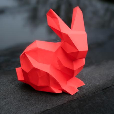 detail_bunnykit4